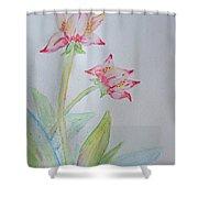 Tulip Duo I  Shower Curtain