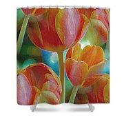 Tulip Fascination Shower Curtain