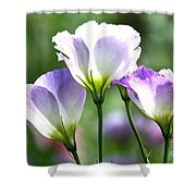 Tulip Gentian Flowers Shower Curtain