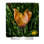 Tulip Opening Shower Curtain