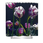 Tulip Springtime Memories Shower Curtain