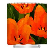 Tulip Trio Shower Curtain