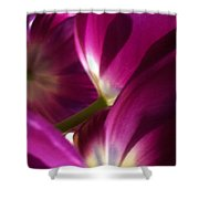 Tulip Weave Shower Curtain