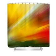 Tulips -2 Shower Curtain