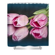 Tulips And Reflections Shower Curtain