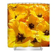 Tulips Art Prints Yellow Tulip Flowers Floral Shower Curtain