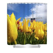 Tulips In A Field And A Windmill At Shower Curtain