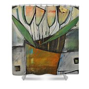 Tulips In Terracotta Shower Curtain
