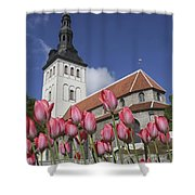 Tulips Outside Niguliste Church Shower Curtain