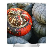 Turban Pumpkin Shower Curtain