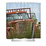 Turned Out To Pasture Shower Curtain by Wilma  Birdwell