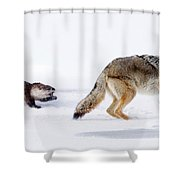 Turning The Tables Shower Curtain
