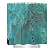 Turquoise Blue Feathers Shower Curtain