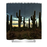 Turquoise Skies  Shower Curtain