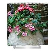 Tuscan Earthenware Pot And Flowers Shower Curtain