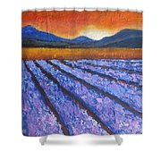 Tuscany Lavender Field Shower Curtain