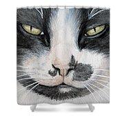 Tuxedo Cat Shower Curtain