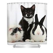 Tuxedo Kitten With Black Dutch Rabbit Shower Curtain