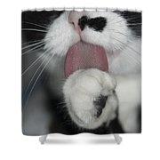 Tuxedo Kitty Lollipop Shower Curtain