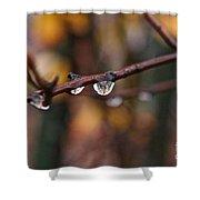 Twig Shower Curtain