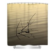 Twigs Breaking The Calm Surface Of The Lake On Sunset Shower Curtain