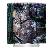 Twilight In My Eyes Shower Curtain