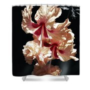 Twin Beauty Hibiscus Shower Curtain