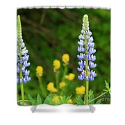 Twin Towers Of Flower Shower Curtain