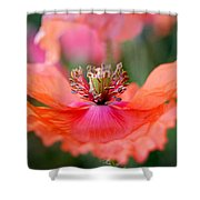 Twirling Floral Skirt Shower Curtain
