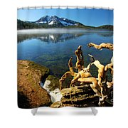 Twisted On The Shore Shower Curtain