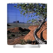 Twisted Tree Monument Valley Shower Curtain