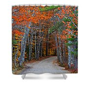 Twisting Road Of Fall Shower Curtain