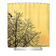 Two Birds In A Tree Shower Curtain