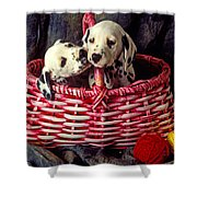 Two Dalmatian Puppies Shower Curtain