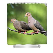 Two Doves Shower Curtain