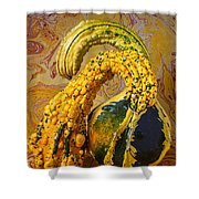 Two Gourds Shower Curtain