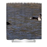 Two Guys Shower Curtain