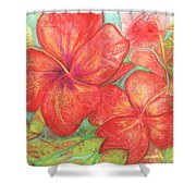 Two Hibiscus Blossoms Shower Curtain