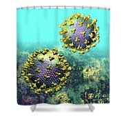 Two Hiv Particles On Light Blue Shower Curtain