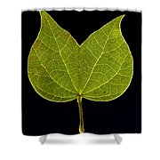 Two Lobed Leaf Shower Curtain