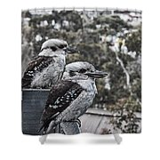 Two Of A Kind V2 Shower Curtain
