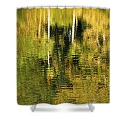 Two Palms Reflected In Water Shower Curtain by Rich Franco