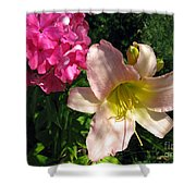 Two Pink Neighbors- Lily And Phlox Shower Curtain