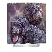 Two Poodles Shower Curtain
