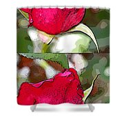 Two Rose Buds Shower Curtain
