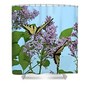 Two Swallowtails Shower Curtain