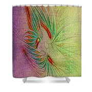 Two Tone Frac Abstract Shower Curtain
