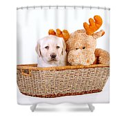 Two Toys Shower Curtain