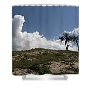 Two Trees Of Many Glacier Shower Curtain