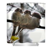 Two's Company Shower Curtain